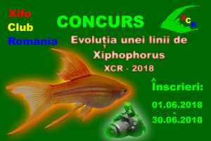 Concurs XCR